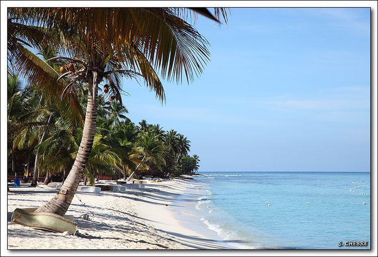 Plage de l'île de Saona République Dominicaine