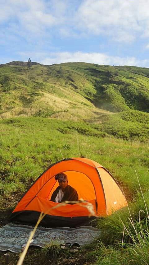 Camping in the wonderful grassland of Tambora National Park, Dompu, the island of Sumbawa, Indonesia