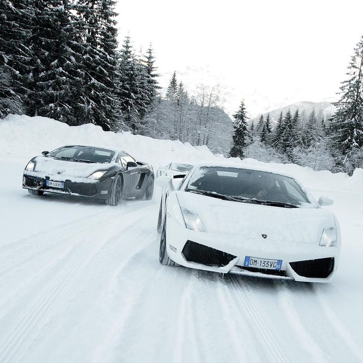 Lamborghini Gallardos Driving In The Snow