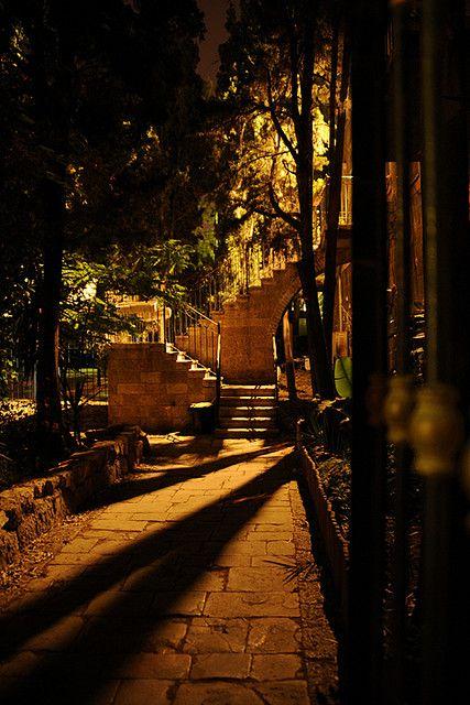 Lovely, quiet, corner in Jerusalem, Israel. I can't wait to go back.