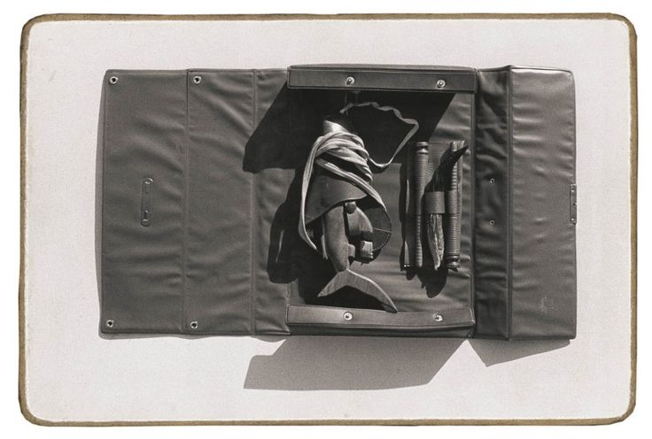 Šark v kufříku   Šark – cyklus 23 ks   fotografie na sololitu   16 x 25 cm
