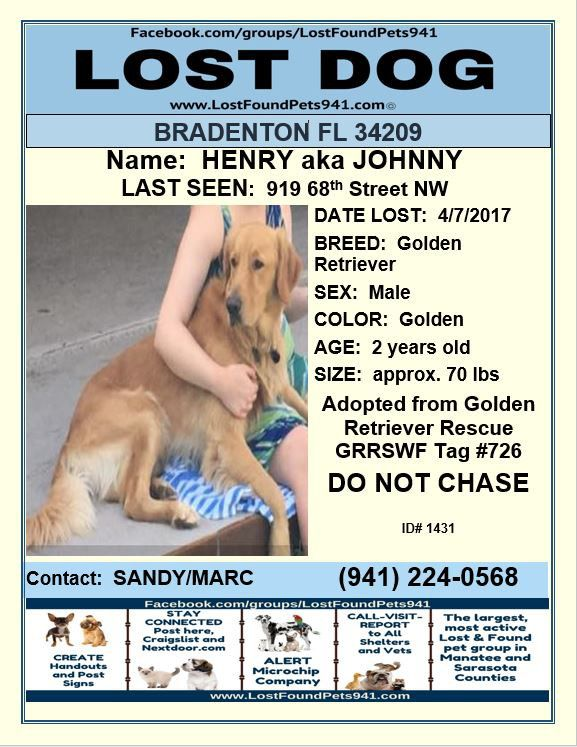 Have You Seen Henry Lost Dog Lostdog Goldenretriever Please Rt Lostpetservices Bradenton Fl With Images Losing A Dog Losing A Pet Service Animal