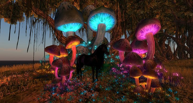Glowy Mushrooms! Yay!