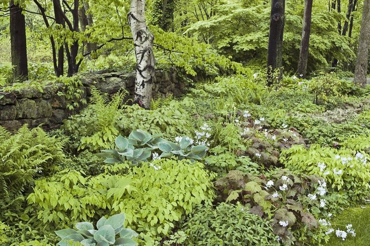 70 Best Images About Hudson Valley Gardening On Pinterest