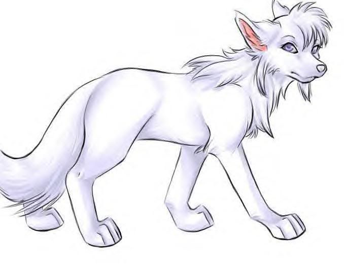 white anime wolf drawing