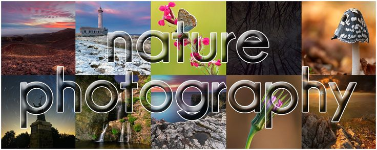 Alfonso Morabito - Nature Photography