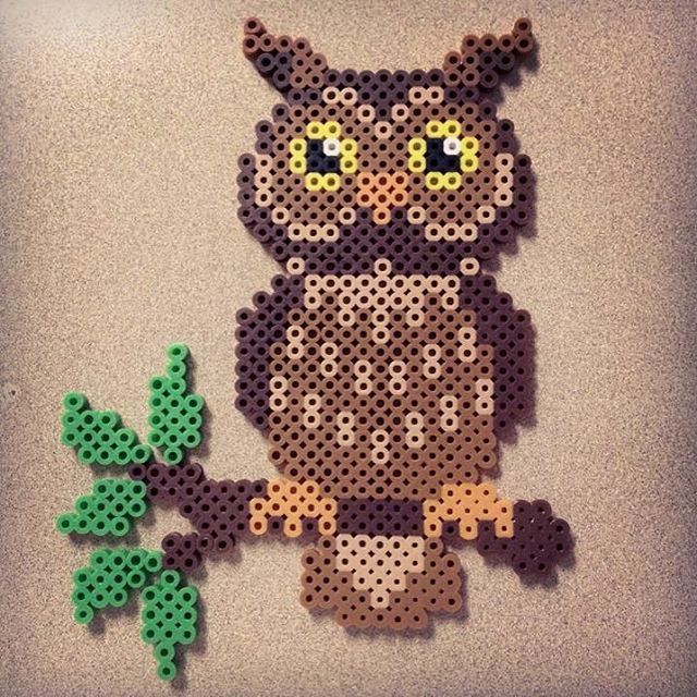 Owl perler beads by leonel_prez
