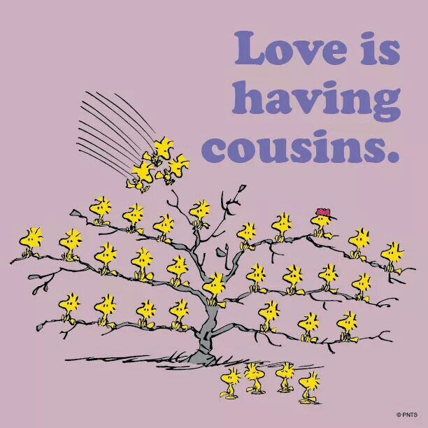 Inspirational Quotes For Cousins: 15 Best It's A Cousin Thing. Images On Pinterest