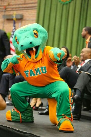 298 best images about #iRep FAMU on Pinterest   Marching ...