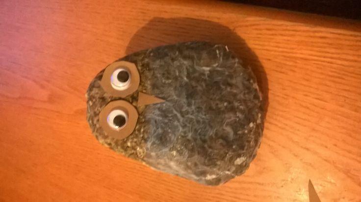 kivi pöllö