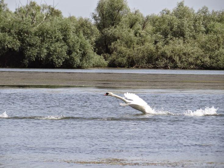 Danube Delta, Romania's paradise