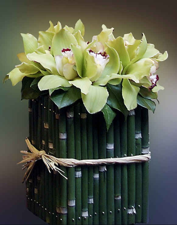 Equisetum stems, Cymbidium orchids. recreate the bamboo look on the back wall  - (re)pinned by www.WestPointOrchids.com