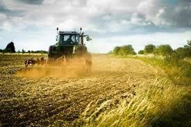 Espropri, Lodi diventa più giusta: aumentano i valori agricoli medi