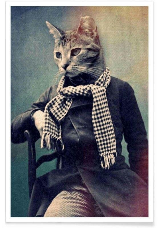 Картинки парень с головой кота