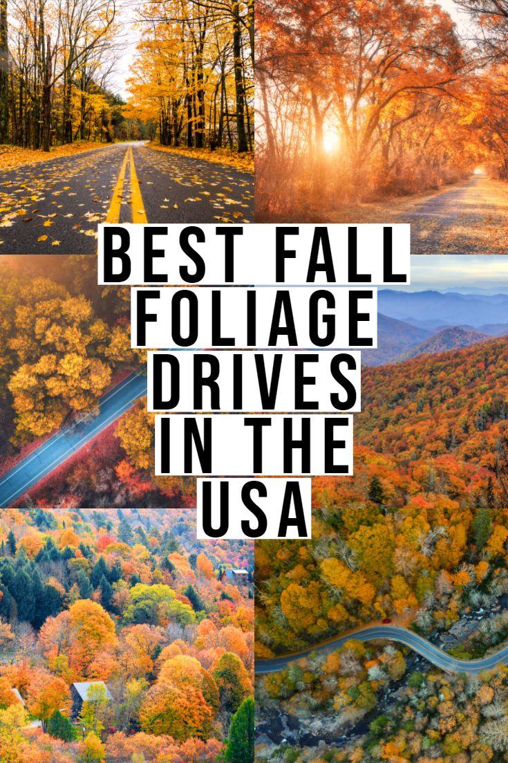 BESTES Herbstlaub in den USA!   – Best of Eatlivetraveldrink