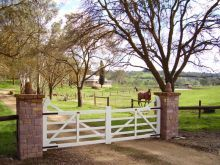 Fabulous farm gates from Country Gates in South Australia  ~  Pillars a little different but these will be the gates for the new farm entrance