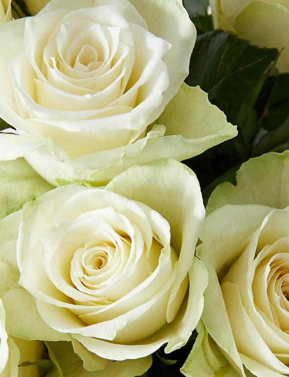Fairtrade White Rose Bouquet M S In 2021 Easter Egg Gifts White Roses White Rose Bouquet