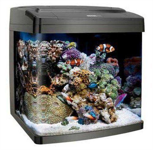 Sistema-de-aquario-para-todas-as-aguas-tanque-de-peixes-Coralife-Bio-Cubo-11-8-Litros-Luz-Led