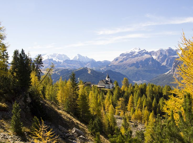 Autumn-Special 9=7, two nights for free! Autumn is the most beautiful season of the year at the Hotel Sonnenburg. At this time of the year you can not only take wonderful excursions, but the highlight will be the culinary cuisine.