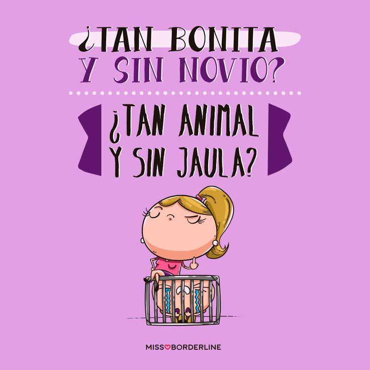 -¿Tan bonita y sin novio? -¿Tan animal y sin jaula? #humor #graciosas #divertidas #funny