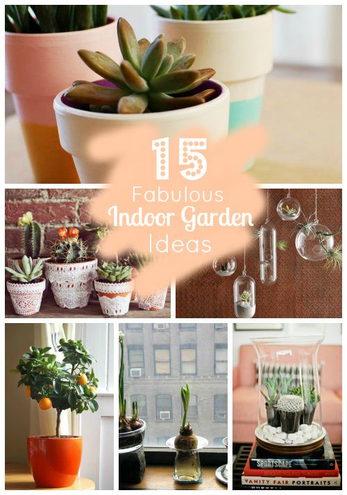 15 fabulous indoor garden ideas
