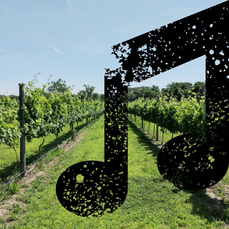 What's Happening at Willow Creek Farm & Winery CapeMay