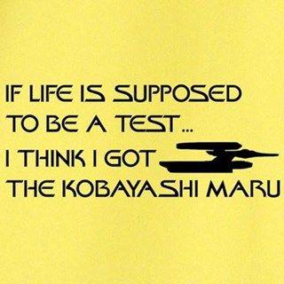 Did you ever feel that life was one big Kobayashi Maru?