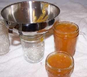 Homemade Apricot Jam: Jam Recipes, Canning Recipes, Nectarine Honey, Recipes Canning Preserves, Canning Peaches, Jelly Recipes, Peaches Jam, Persimmon Jelly, Peaches Honey