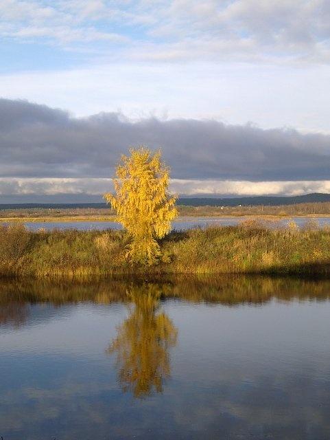 Autumn reflections in Rovaniemi