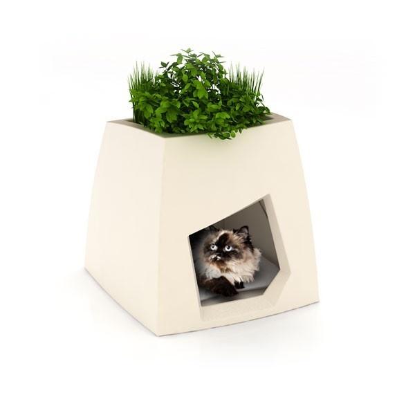100 best PetS images on Pinterest | Adorable animals, Cute kittens Modern Cat House Design Html on e-mail cat, marketing cat, oracle cat, sharepoint cat, dom cat, linux cat, spastic cat, curl cat, photoshop cat, twitter cat, cgi cat, web cat, python cat, iphone cat, fireworks cat,