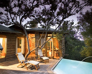 Plettenberg Bay, South Africa    Why It's Unique: Overlooking the Tsitsikamma Forest, the architecturally stunning stone-and-glass lodge has 10 secluded treehouse suites, each with floor-to-ceiling bedroom windows, log fireplace in the living room, private deck, and infinity-edge pool.