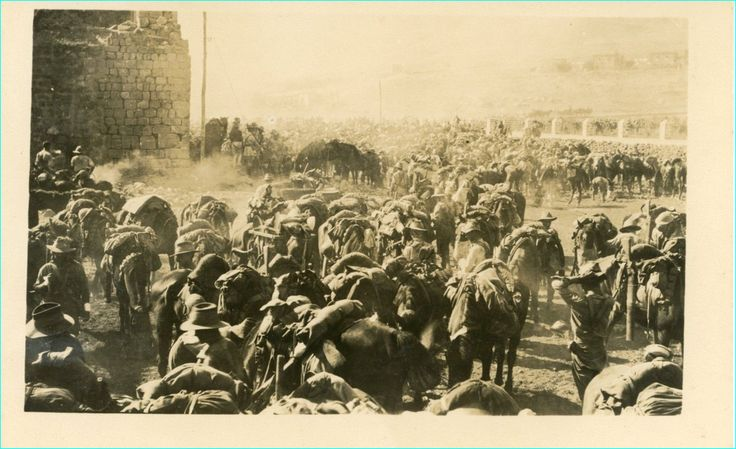 Light Horse Brigade . Somewhere in the Middle East. WW1.  Lest We Forget