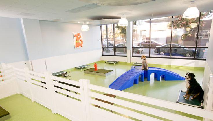 Best 25 dog daycare ideas on pinterest dog boarding for Dog boarding los angeles