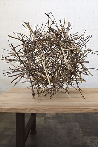 this is a twig light- it is so cool- wish i could figure out how to make it...