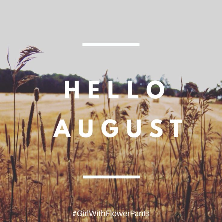 August, my favourite month of the year