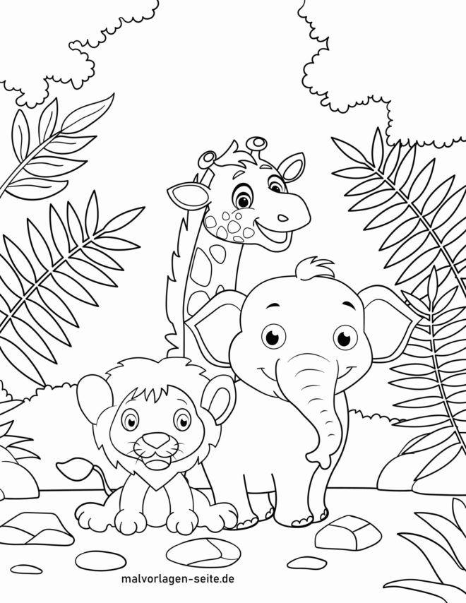 Malvorlage Wilde Tiere Tiere Zum Ausmalen Malvorlagen Tiere Ausmalbilder Tiere
