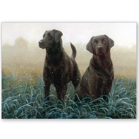 Morning Dogs - Labrador Retrievers.