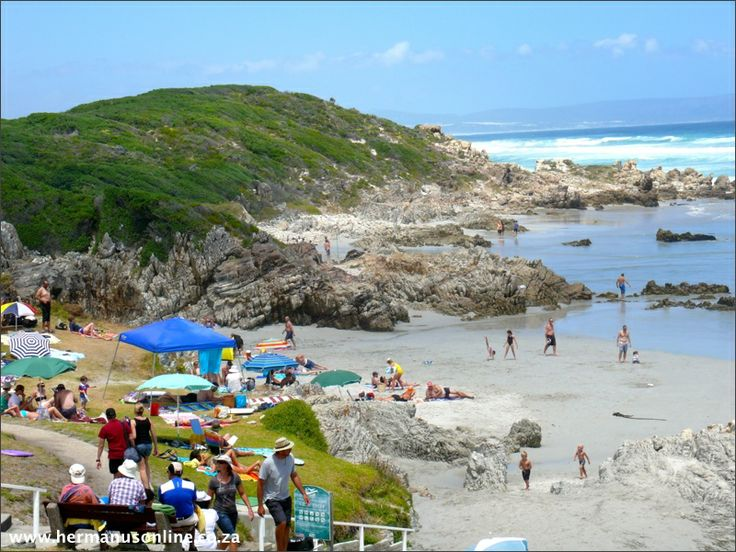Hermanus's Voelklip Beach will always hold a special place in my heart; Sheltered from the wind  popular with surfers. It has grass terraces, ideal for sunbathing and picnics without the sand. There are a number of benches providing the perfect place for whale watching.There are clean amenities and ample parking