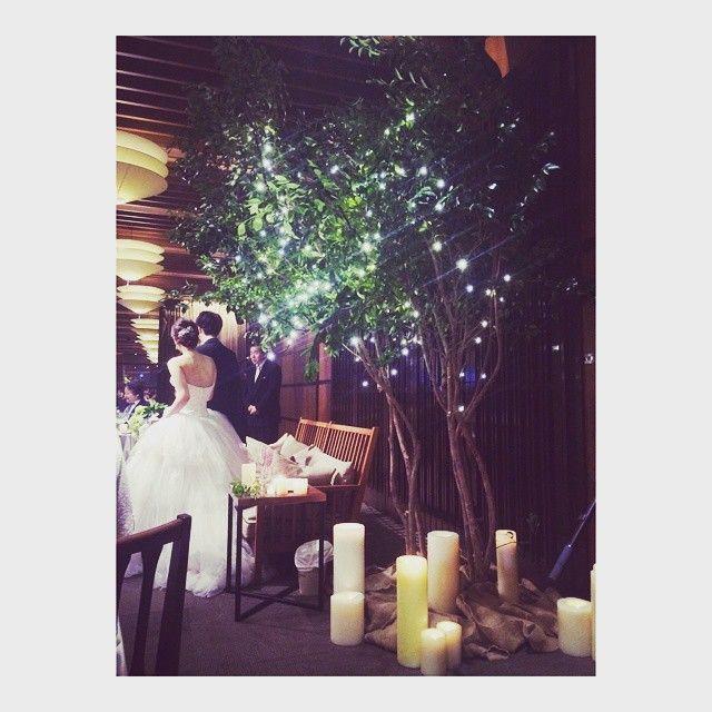 """""""やっぱり、木にしてよかったー  キラキラ、可愛かったな。  下のキャンドルもいい感じ  大きなキャンドル♡  #会場装花 #プレ花嫁  #卒業"""" Photo taken by @noshiwayokakia on Instagram, pinned via the InstaPin iOS App! http://www.instapinapp.com (06/28/2015)"""