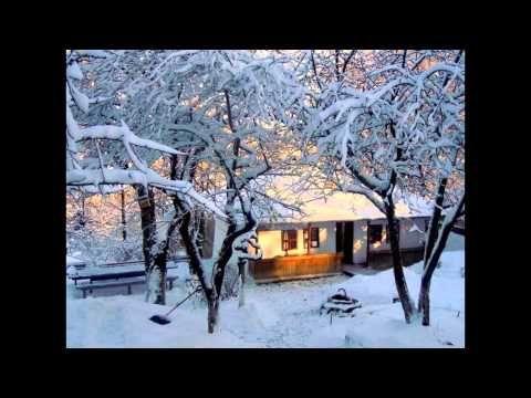 iarna acasa