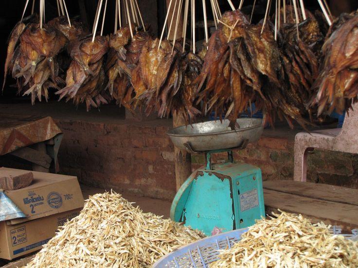 Laos Centrale, verso Ventiane: il mercato del pesce di Thahua