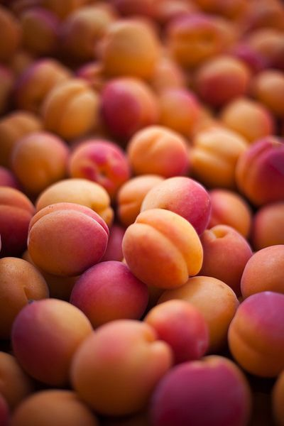 duraznos | peaches