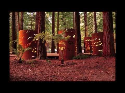 Process clip of the #Redwoods Shroud project that was installed mid 2013 in the #whakarewarewa forest in #Rotorua.