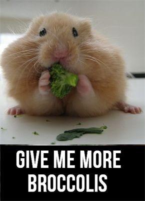 Cute broccoli fan :)