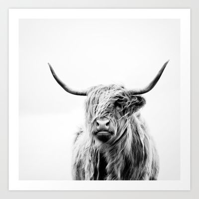 Cow Wall Art top 25+ best highland cow print ideas on pinterest | cow print
