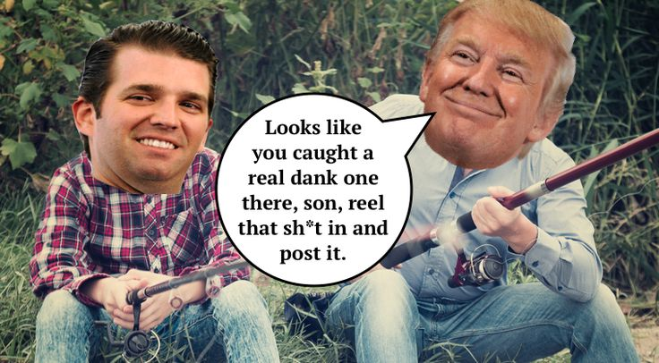 Liberals lose it over this Donald Trump Jr. meme tweet