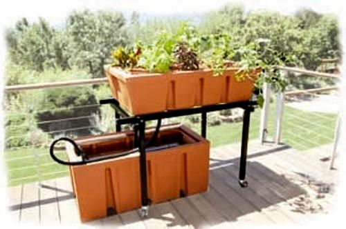 TAB Aquaponics System Year-round, organic, low stress aquaponics gardening is finally here. AB Aquaponics System  is the world's first organic gardening system that has been designed to grow plants and fish, year-round, both indoors and out.