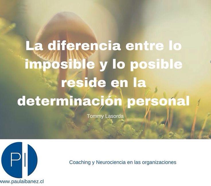 La determinación con un buen plan de acción marca la diferencia #coaching #planaccion #neuroliderazgo
