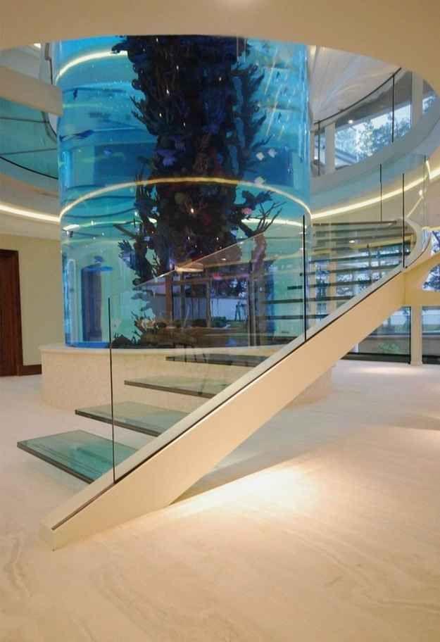 A Staircase That Wraps Around an Aquarium