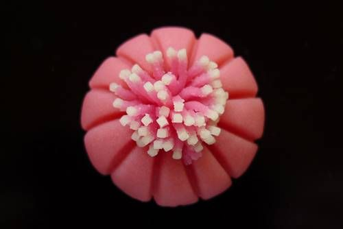 Wagashi Fruit